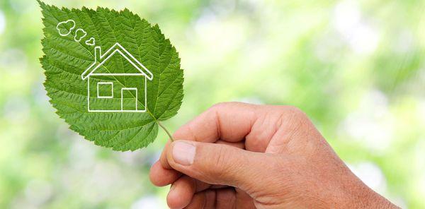 zielony liść z narysowanym domkiem trzymany w dłoni